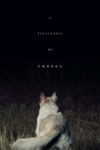 "Poster for the movie ""To przychodzi po zmroku"""